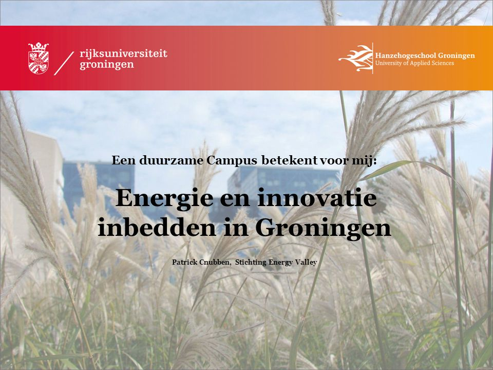 Patrick Cnubben, Stichting Energy Valley