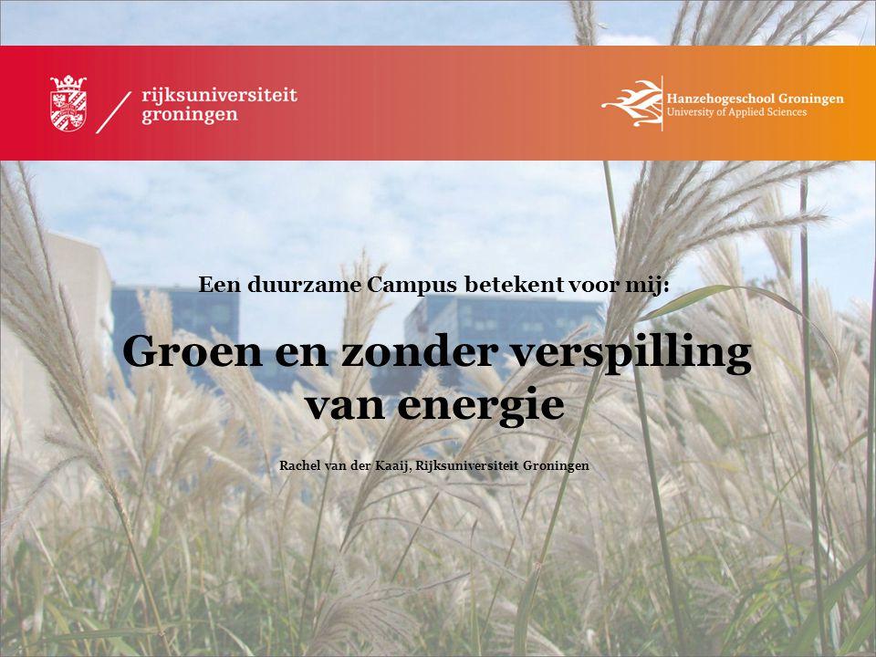 Rachel van der Kaaij, Rijksuniversiteit Groningen