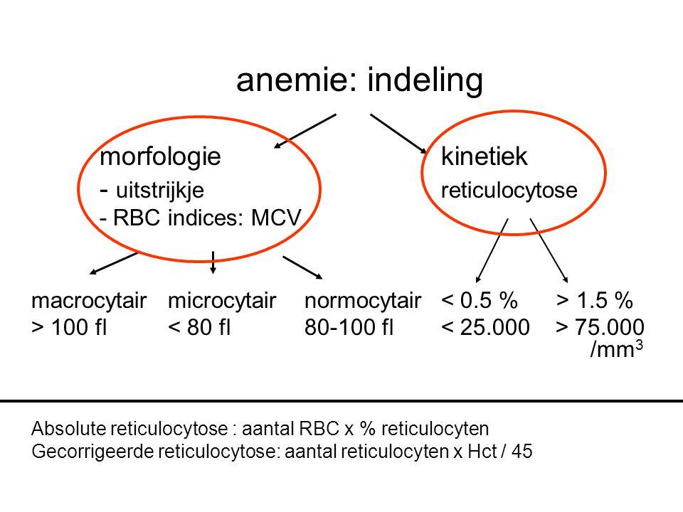 anemie: indeling morfologie kinetiek - uitstrijkje reticulocytose