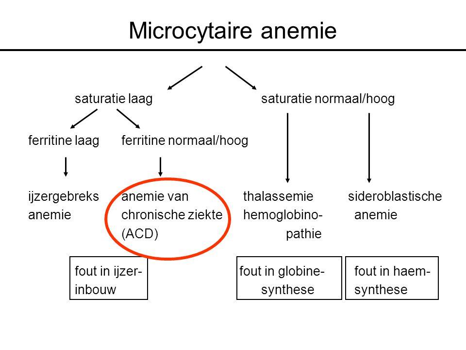 Microcytaire anemie saturatie laag saturatie normaal/hoog