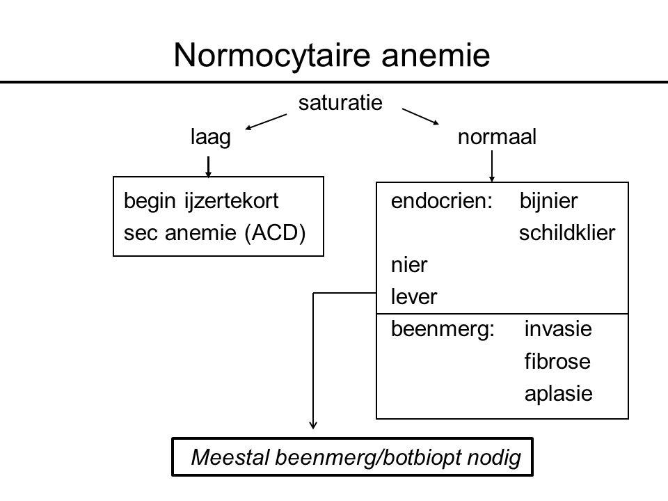 Normocytaire anemie saturatie laag normaal