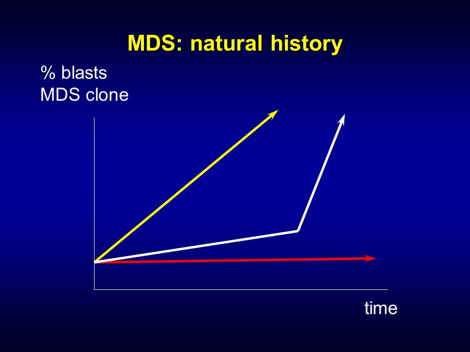 MDS: natural history % blasts MDS clone time