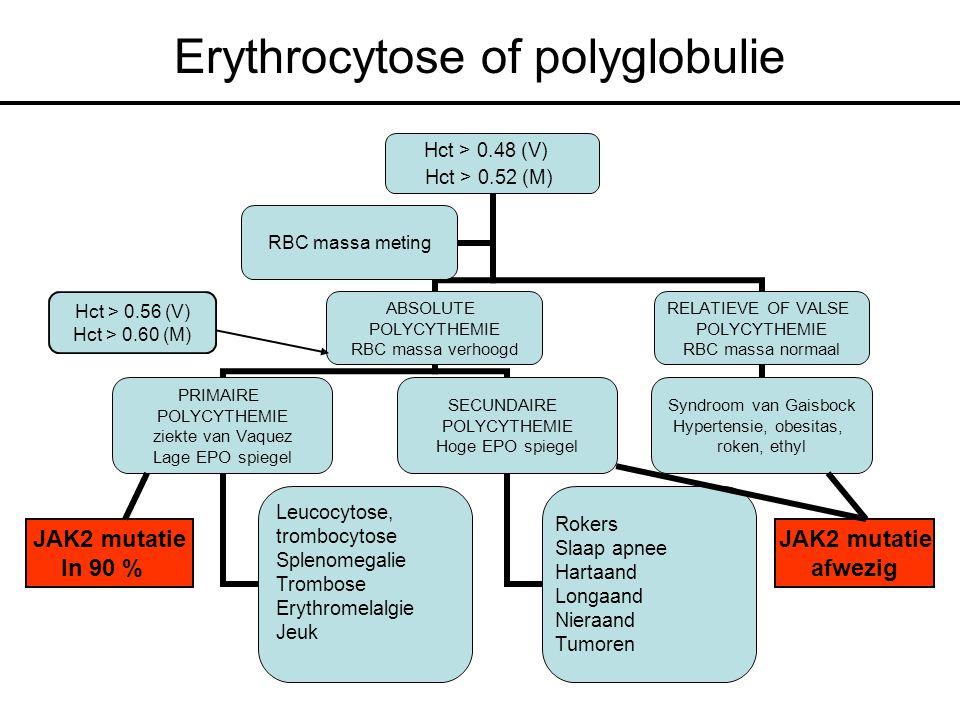 Erythrocytose of polyglobulie