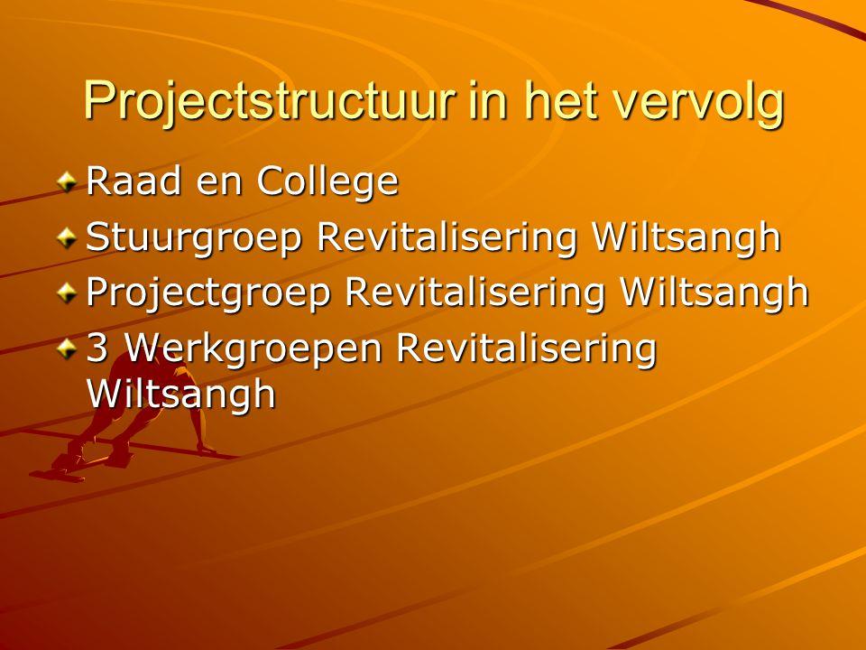 Projectstructuur in het vervolg