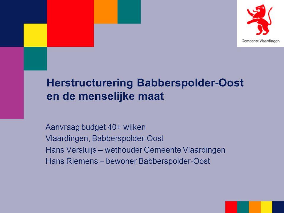 Herstructurering Babberspolder-Oost en de menselijke maat