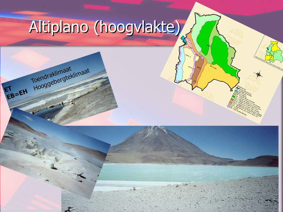 Altiplano (hoogvlakte)