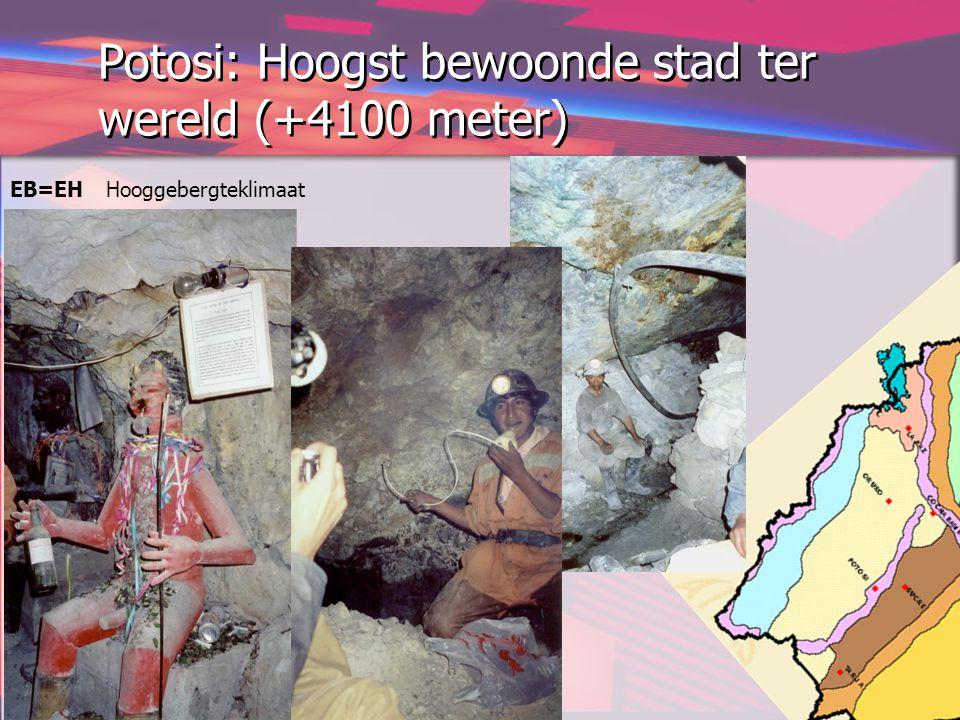 Potosi: Hoogst bewoonde stad ter wereld (+4100 meter)