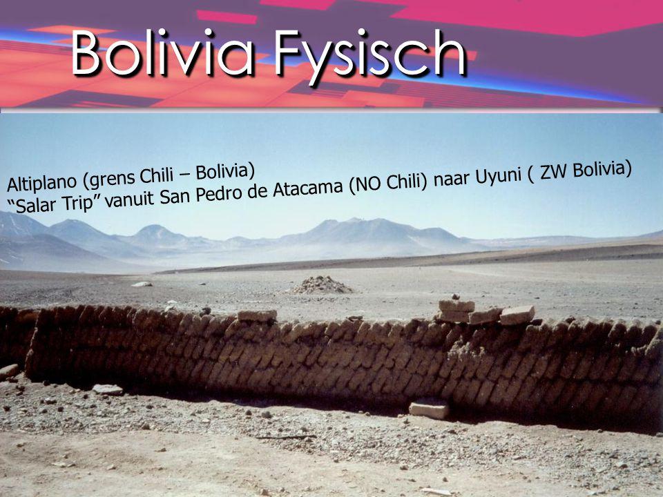 Bolivia Fysisch Altiplano (grens Chili – Bolivia)
