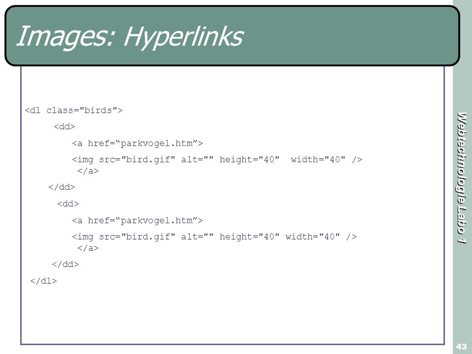 Images: Hyperlinks <dl class= birds > <dd>