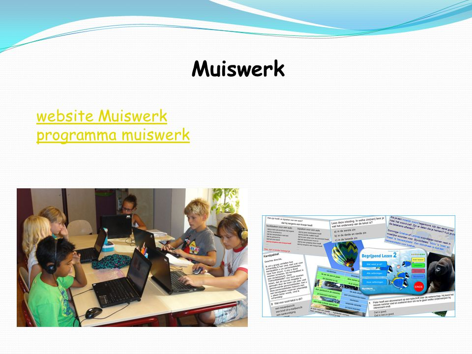 Muiswerk website Muiswerk programma muiswerk