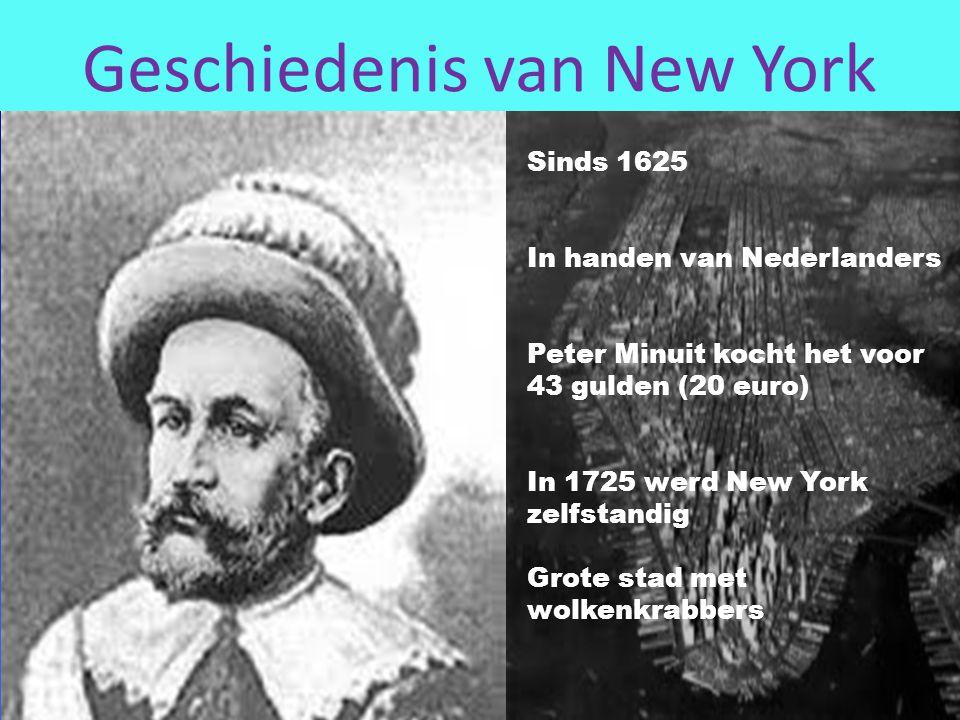Geschiedenis van New York