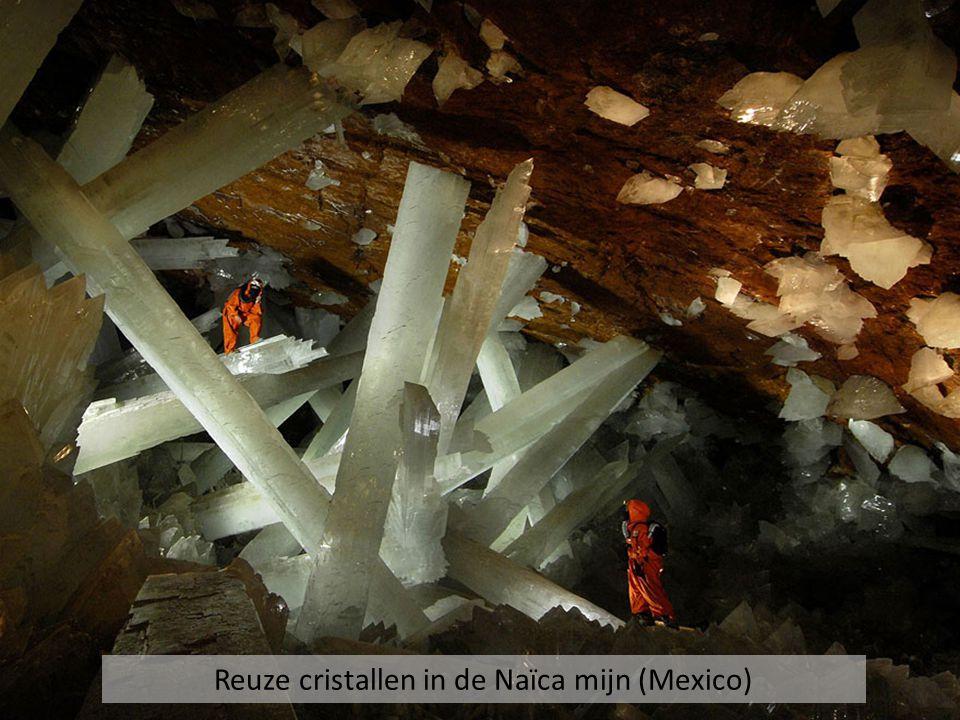 Reuze cristallen in de Naïca mijn (Mexico)