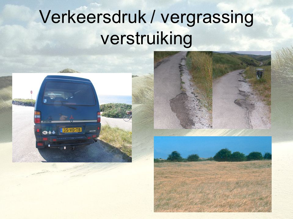 Verkeersdruk / vergrassing verstruiking