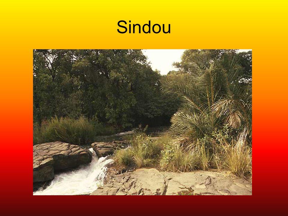 Sindou