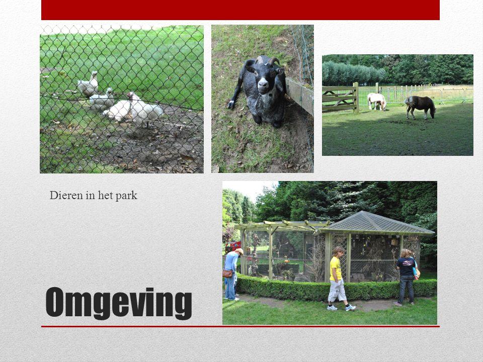 Dieren in het park Omgeving