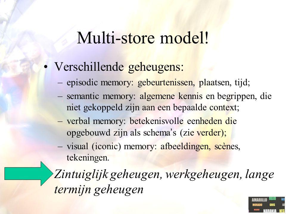 Multi-store model! Verschillende geheugens: