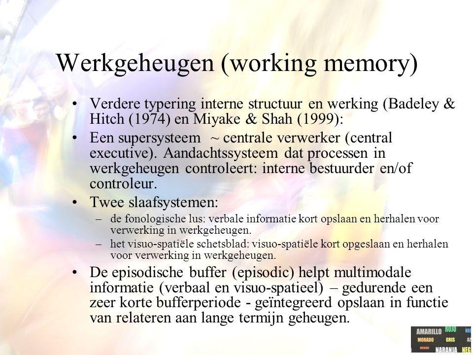 Werkgeheugen (working memory)