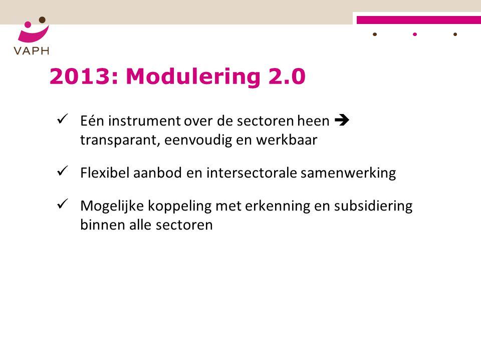 2013: Modulering 2.0 Eén instrument over de sectoren heen  transparant, eenvoudig en werkbaar. Flexibel aanbod en intersectorale samenwerking.