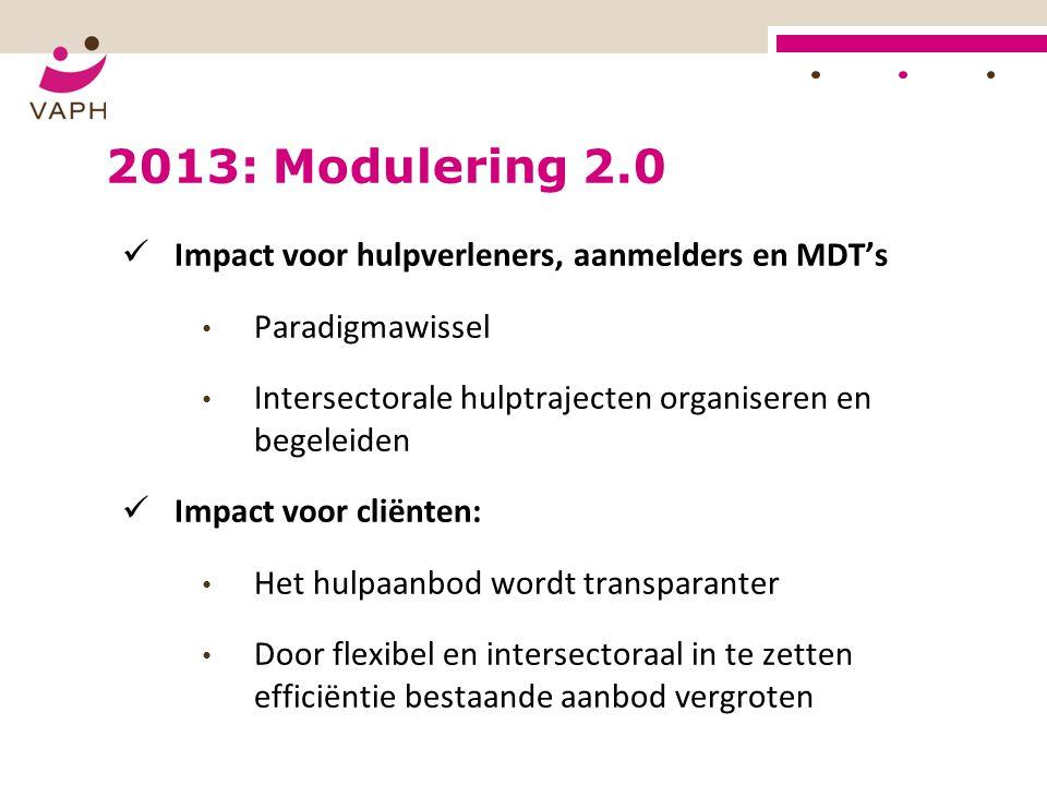 2013: Modulering 2.0 Impact voor hulpverleners, aanmelders en MDT's