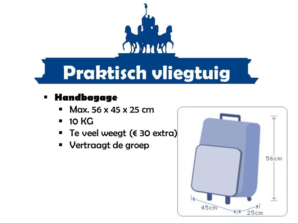 Praktisch vliegtuig Handbagage Max. 56 x 45 x 25 cm 10 KG
