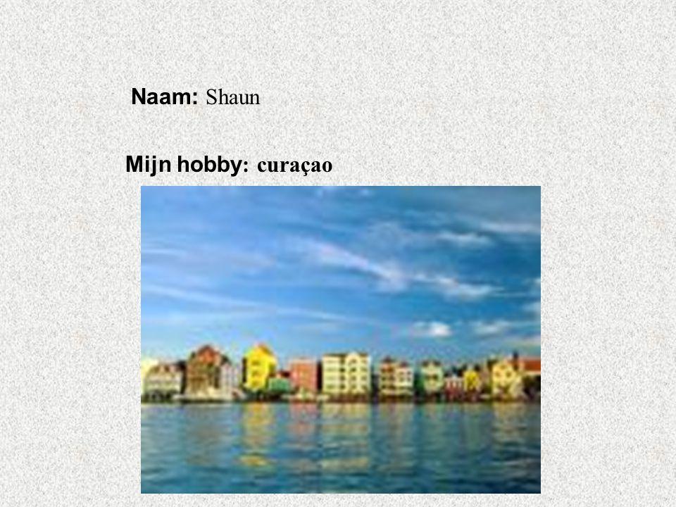 Naam: Shaun Mijn hobby: curaçao Klik op Naam . Vul je naam in .