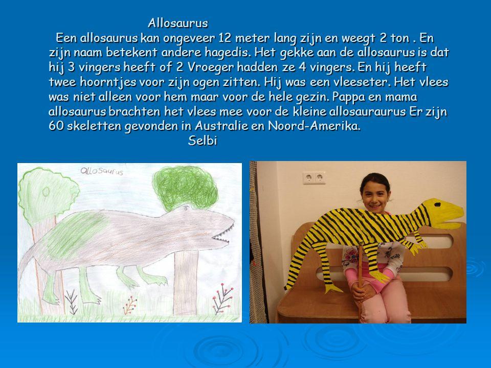 Allosaurus Een allosaurus kan ongeveer 12 meter lang zijn en weegt 2 ton .