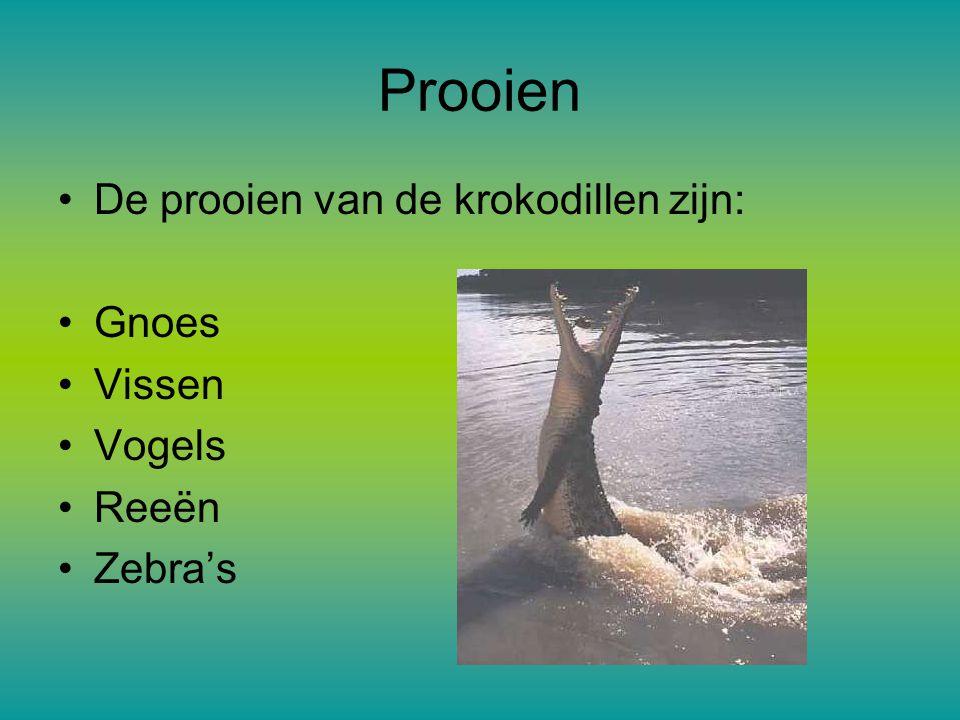 Prooien De prooien van de krokodillen zijn: Gnoes Vissen Vogels Reeën