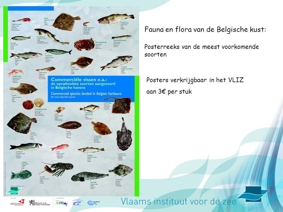 Fauna en flora van de Belgische kust: