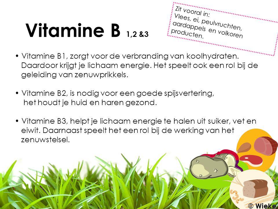 Vitamine B 1,2 &3 Zit vooral in: Vlees, ei, peulvruchten, aardappels en volkoren producten.