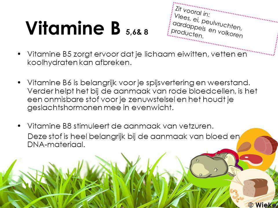Vitamine B 5,6& 8 Zit vooral in: Vlees, ei, peulvruchten, aardappels en volkoren producten.