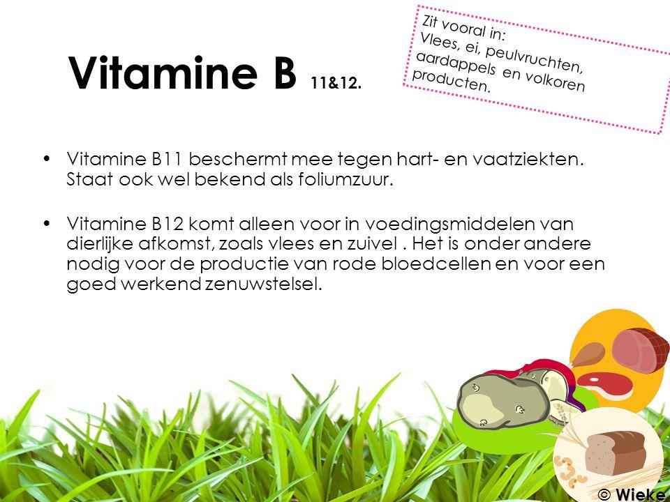 Vitamine B 11&12. Zit vooral in: Vlees, ei, peulvruchten, aardappels en volkoren producten.