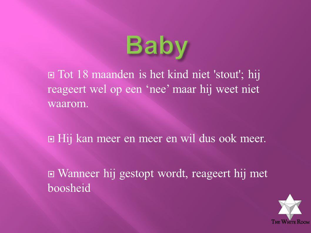 Baby Tot 18 maanden is het kind niet stout ; hij reageert wel op een 'nee' maar hij weet niet waarom.