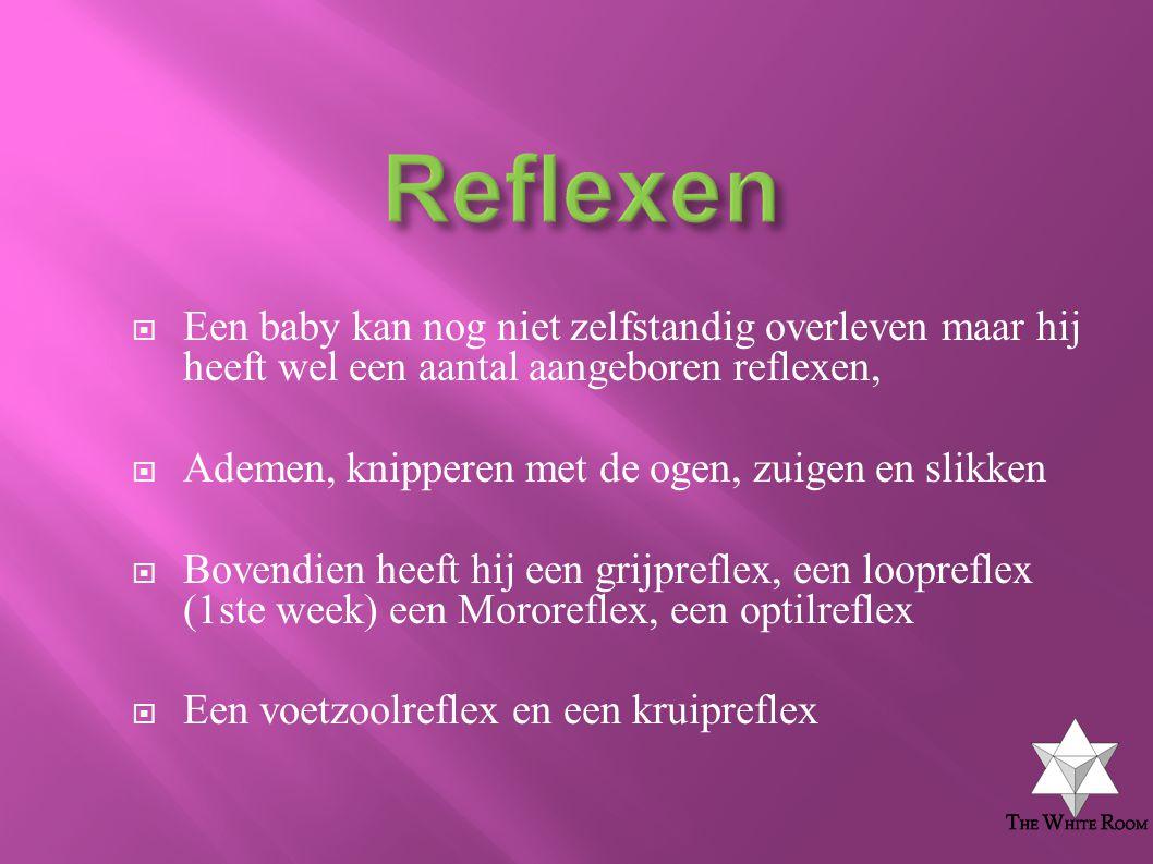 Reflexen Een baby kan nog niet zelfstandig overleven maar hij heeft wel een aantal aangeboren reflexen,