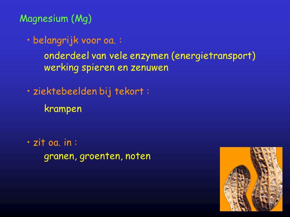 onderdeel van vele enzymen (energietransport)