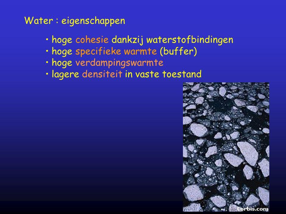 Water : eigenschappen hoge cohesie dankzij waterstofbindingen. hoge specifieke warmte (buffer) hoge verdampingswarmte.