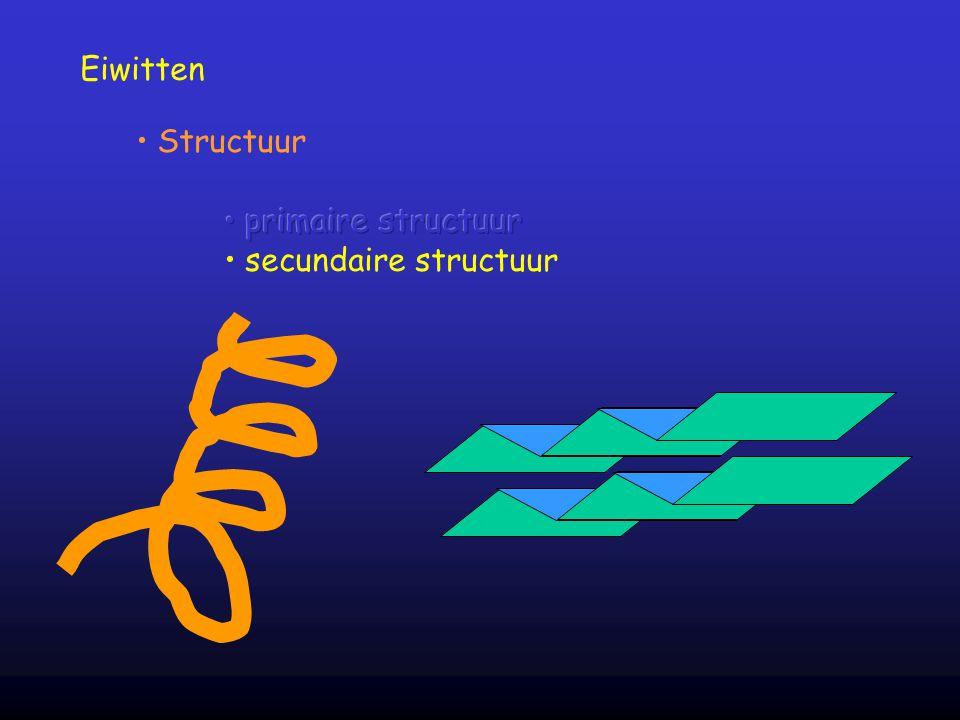 Eiwitten Structuur primaire structuur secundaire structuur