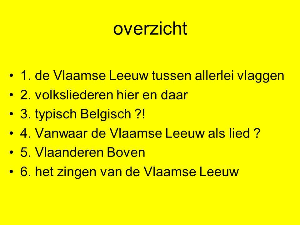 overzicht 1. de Vlaamse Leeuw tussen allerlei vlaggen