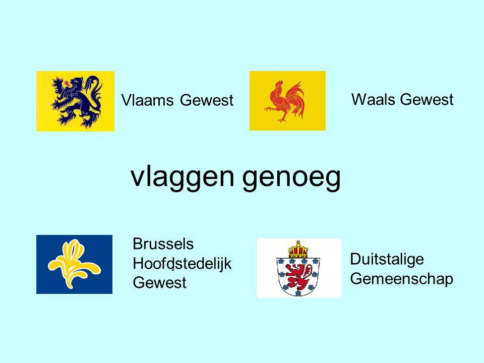 vlaggen genoeg Waals Gewest Vlaams Gewest Brussels Hoofdstedelijk