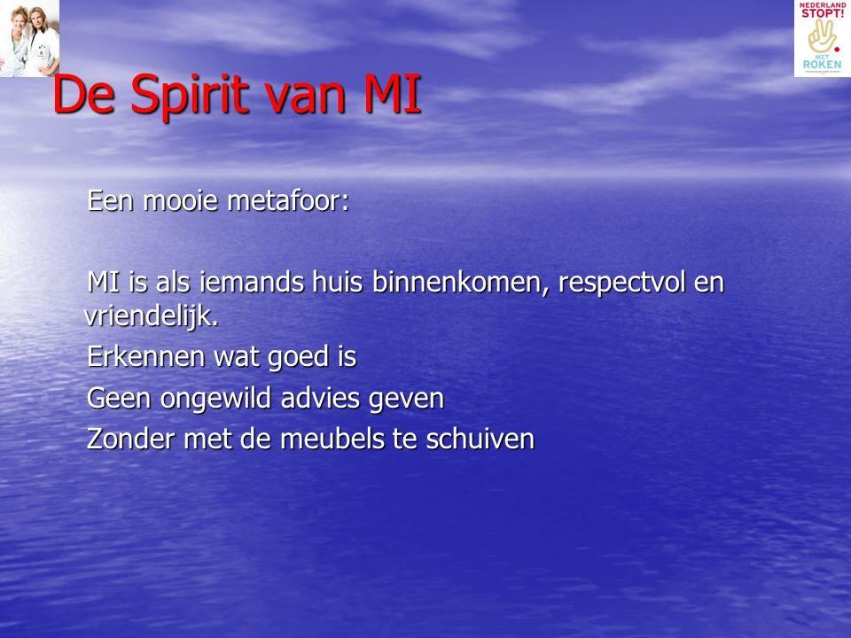 De Spirit van MI Een mooie metafoor: