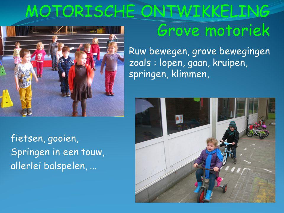 MOTORISCHE ONTWIKKELING Grove motoriek