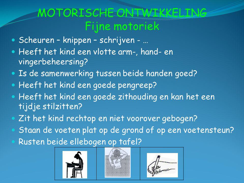 MOTORISCHE ONTWIKKELING Fijne motoriek