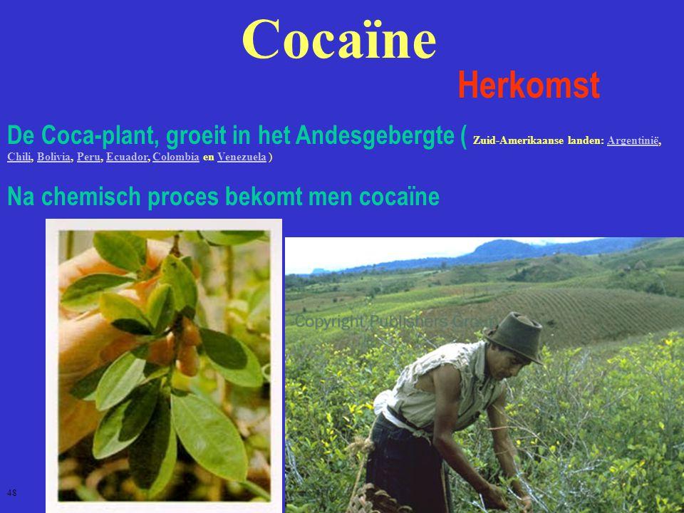 Cocaïne Herkomst.