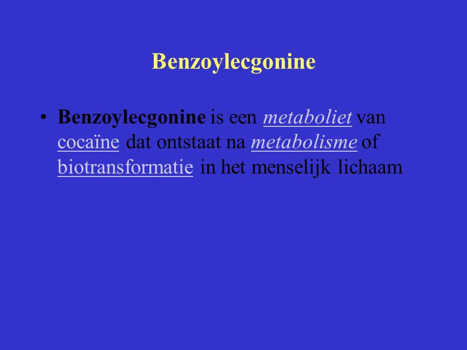 Benzoylecgonine Benzoylecgonine is een metaboliet van cocaïne dat ontstaat na metabolisme of biotransformatie in het menselijk lichaam.