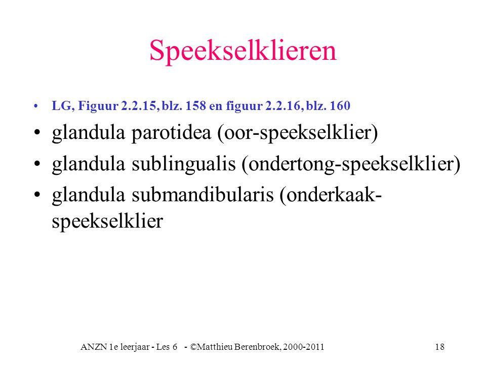 ANZN 1e leerjaar - Les 6 - ©Matthieu Berenbroek, 2000-2011