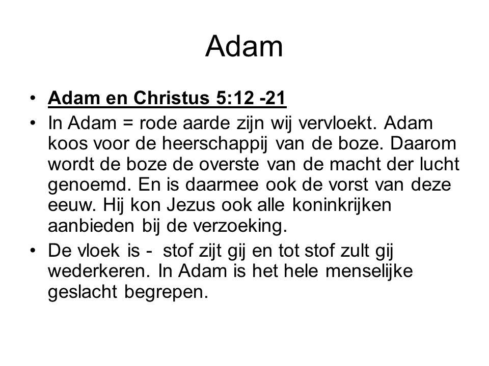 Adam Adam en Christus 5:12 -21