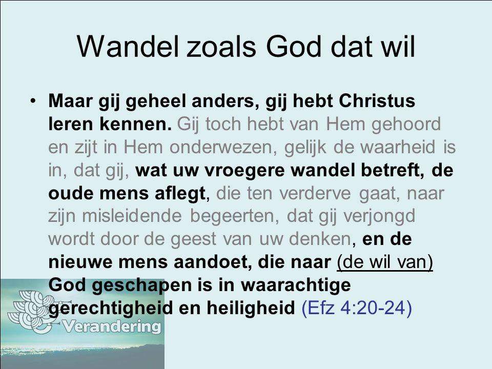 Wandel zoals God dat wil