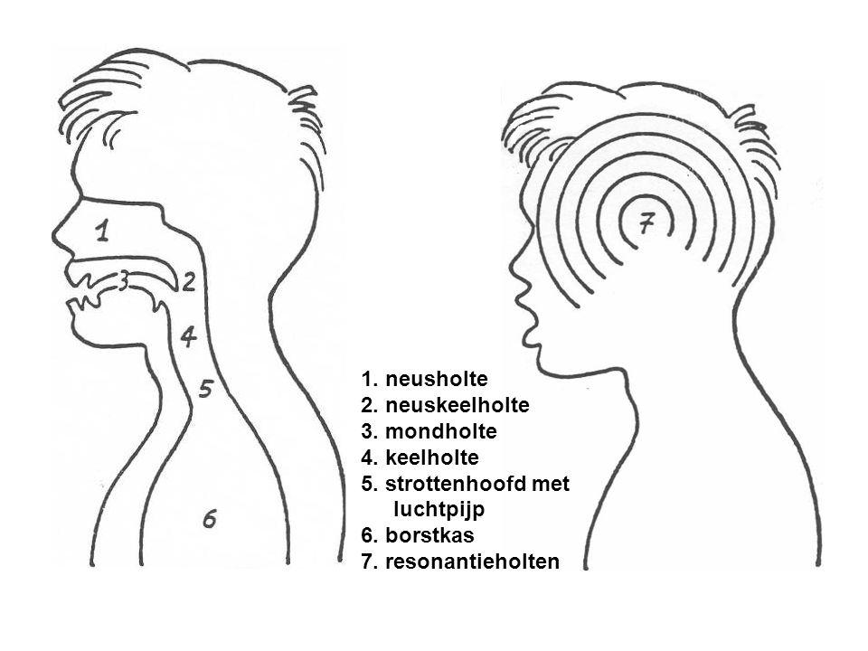1. neusholte 2. neuskeelholte. 3. mondholte. 4. keelholte. 5. strottenhoofd met luchtpijp. 6. borstkas.