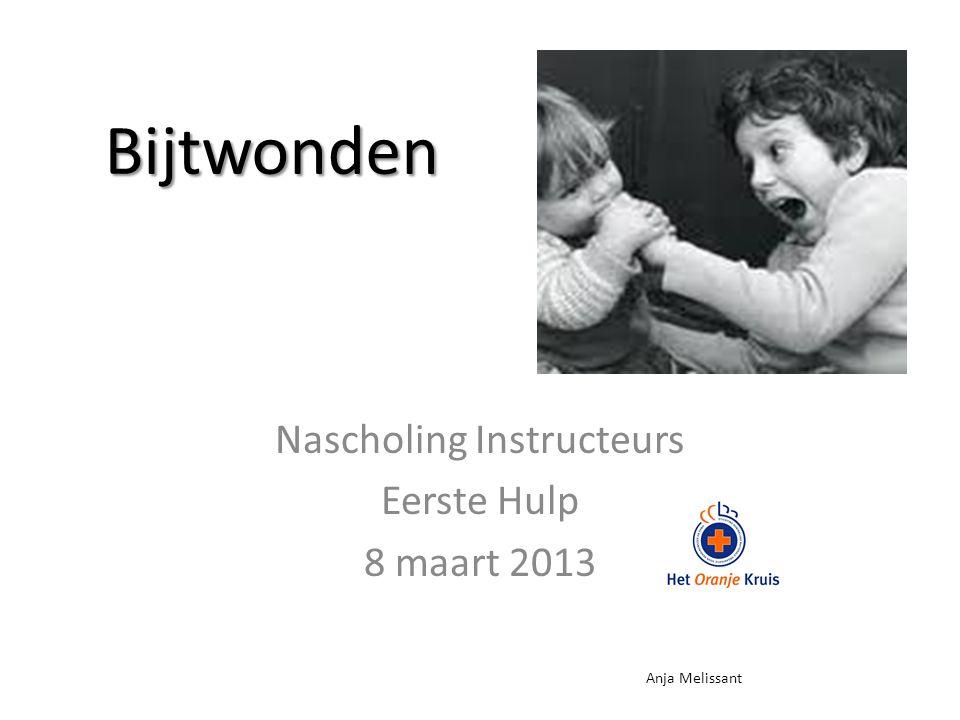 Nascholing Instructeurs Eerste Hulp 8 maart 2013