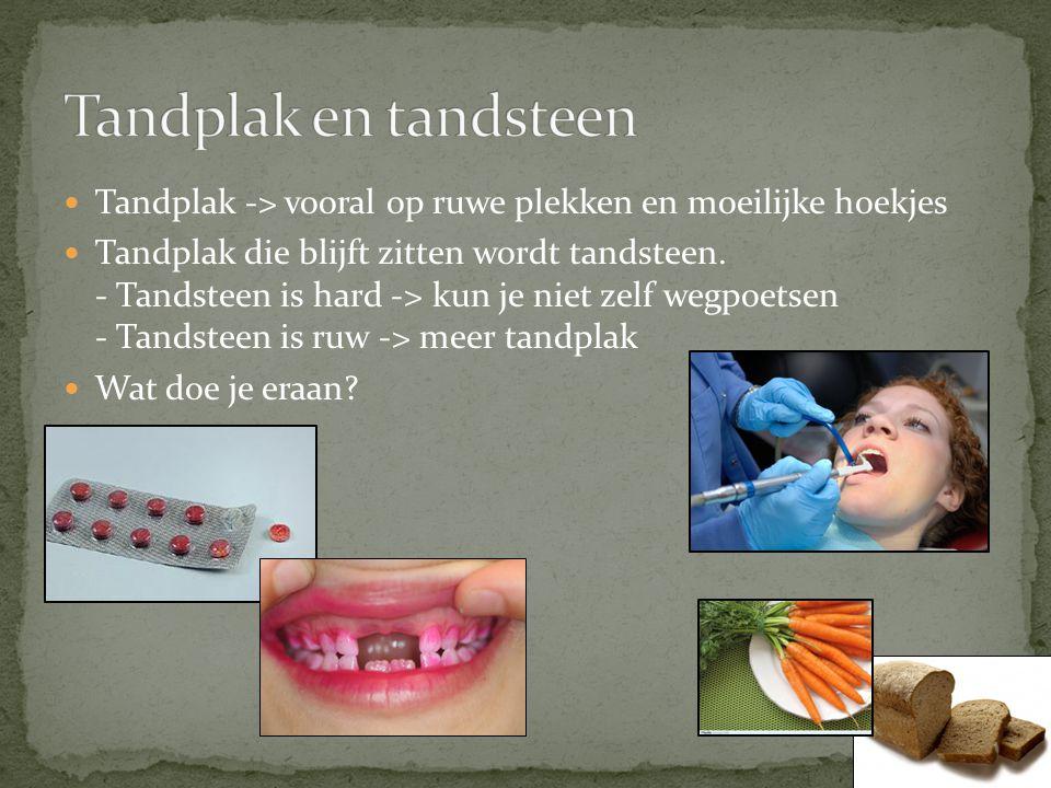 Tandplak en tandsteen Tandplak -> vooral op ruwe plekken en moeilijke hoekjes.