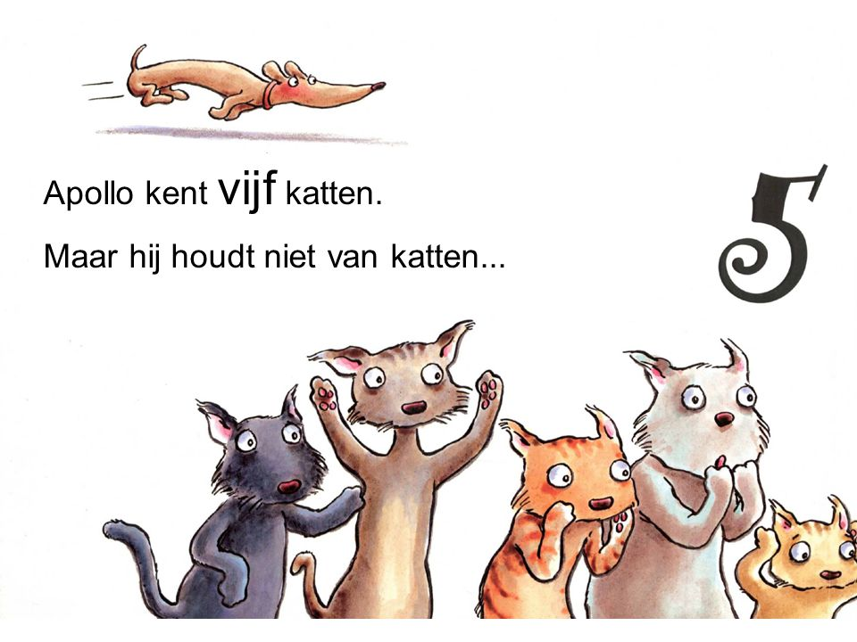 Apollo kent vijf katten.